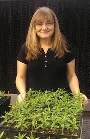 Clemson University geneticist Ksenija Gasic