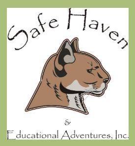 SAFE HAVEN & Animal Adventures