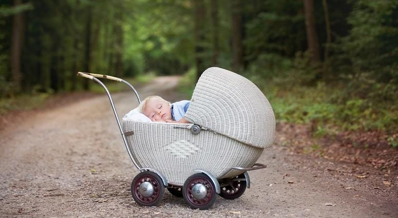 baby bassinet in woods
